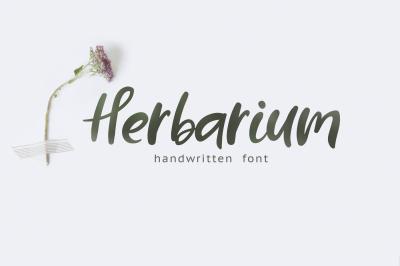 Herbarium font + EXTRAS