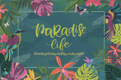 Paradise life collection