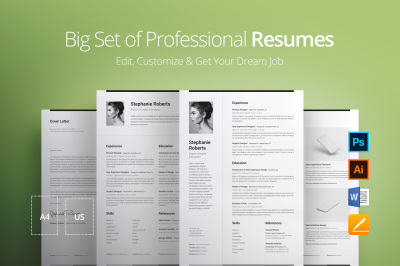 Big Set of Professional Resumes