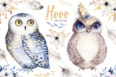 Watercolor cute owls. Hooo collection