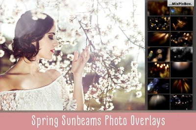 Spring Sunbeams Photo Overlays