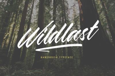Wildlast Handbrush Type