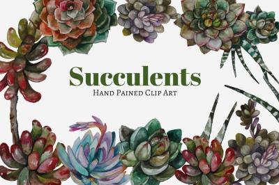 Succulents clip art
