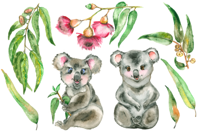 Watercolor Eucalyptus and Koala set