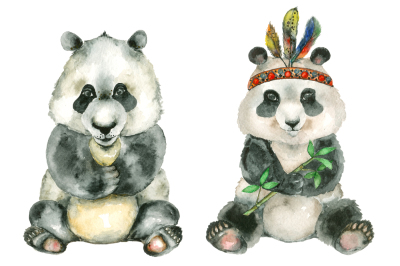 Panda bear and Panda Indian