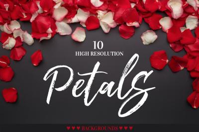 Petals roses JPG set