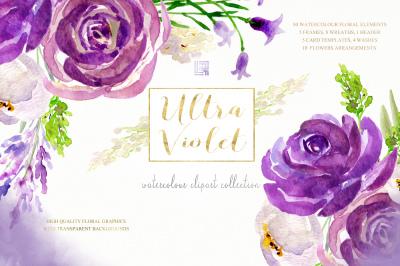 Ultra violet watercolour flowers Digital clipart hand drawn. Soft purp