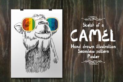 Fashion camel set