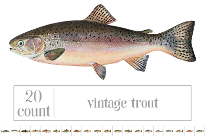 Trout: Vintage Fish Bundle