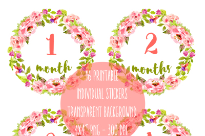 Baby stickers pack - All 12 Months First year Newborn Baby