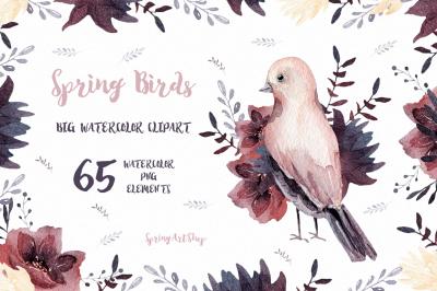 Spring birds Big watercolor clipart