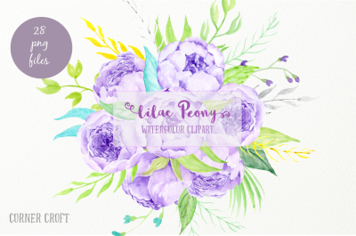 Watercolor Clipart Lilac Peony