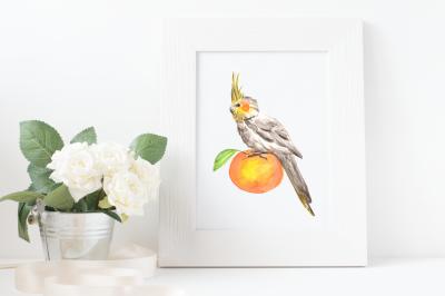 Watercolor Parrot Print + Clip Art