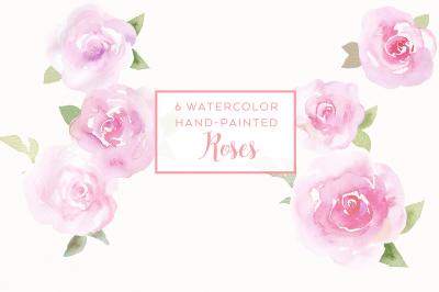 6 watercolor rose illustrations