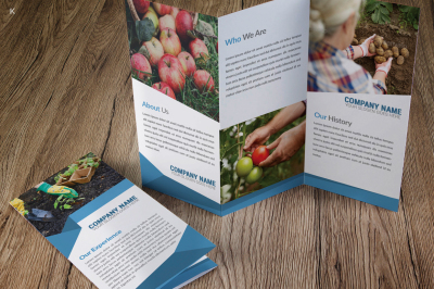 Farm Fresh Products Trifold Template