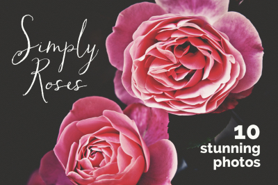 Simply Roses 10 Photo Bundle