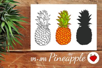 Pineapple. Hand drawn vector.