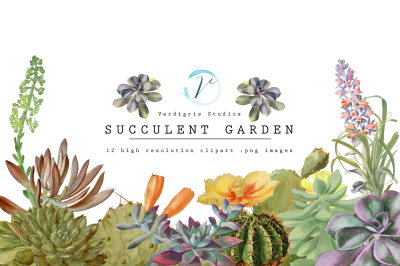 Vintage Succulents and Cactus Clipart