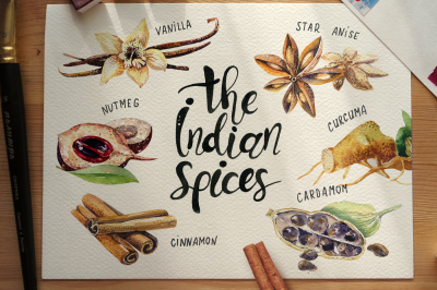 Watercolor Indian spices