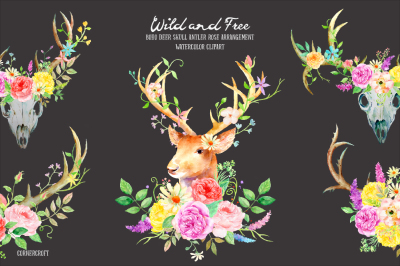 Watercolor Clipart Wild and Free