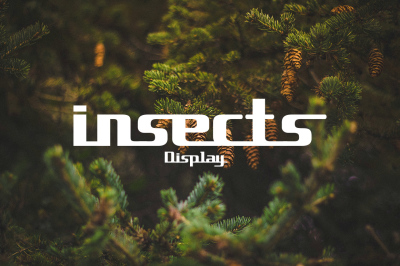 insects font