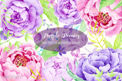 Watercolor Clip Art Purple Peony