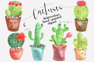 Watercolor Cactuses Collection