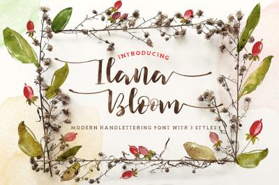 Ilana Bloom