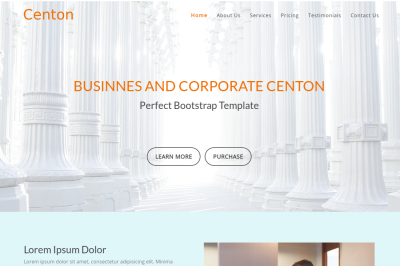 Centon - Perfect Bootstrap Template