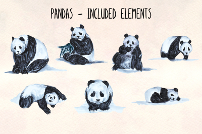 Cute Panda Graphics - 7 Handpainted Illustrator Elements - Vector Graphics Bundle!