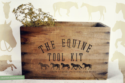The Equine Tool kit