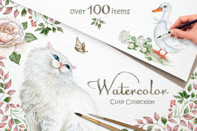 30% off! Animals. Flowers. Boxes