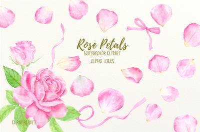 Watercolor Pink Rose Petals