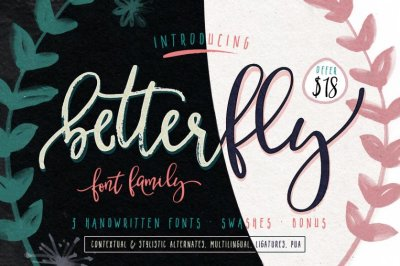 BetterFly - font family (OFFER $18)