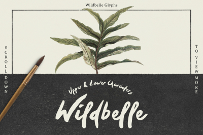 Wildbelle Font