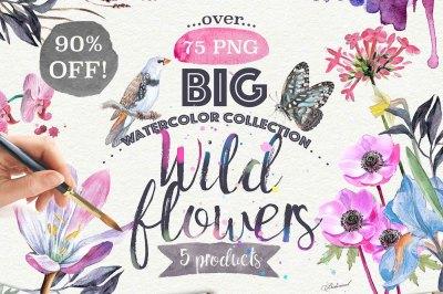 Wild Flowers pack