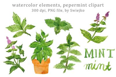 Digital Clip Art, Watercolor Herbs, Leaves, Mint, Peppermint