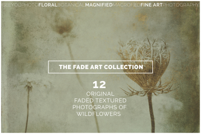 The FADE ART Collection