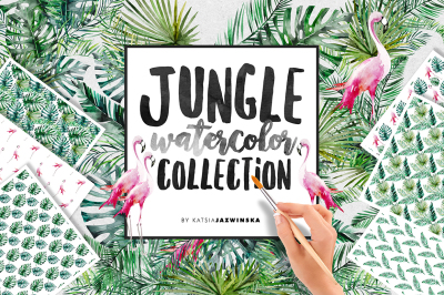 Jungle Watercolor Collection