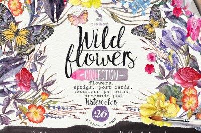 Wild flowers watercolors 26 PNG