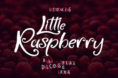 Little Raspberry Typeface+Extras