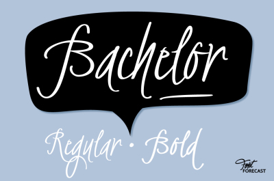 Bachelor Script