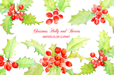 Watercolor Holly Clipart