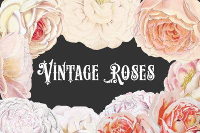 Vintage Pastel Roses Clipart