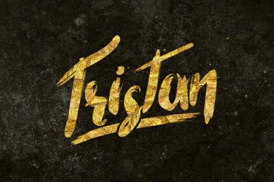 Tristan Brush Font + Bonus