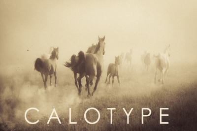 Calotype Lightroom Presets
