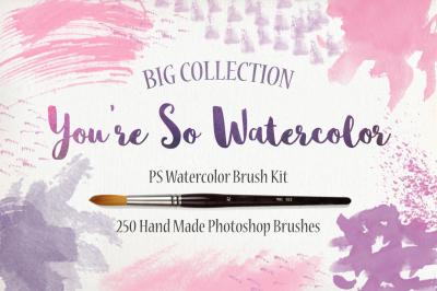 PS Watercolor Brush Kit 250 brushes