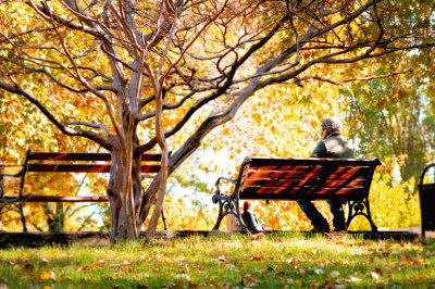 Autumn's tale