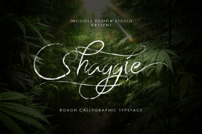 Shaggie