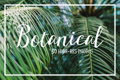 Botanical. 30 Hi-res photos.